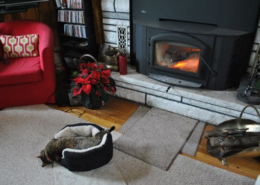 Trixie_fireplace_5